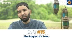 Episode 15: The Prayer of a Tree | Prayers of the Pious