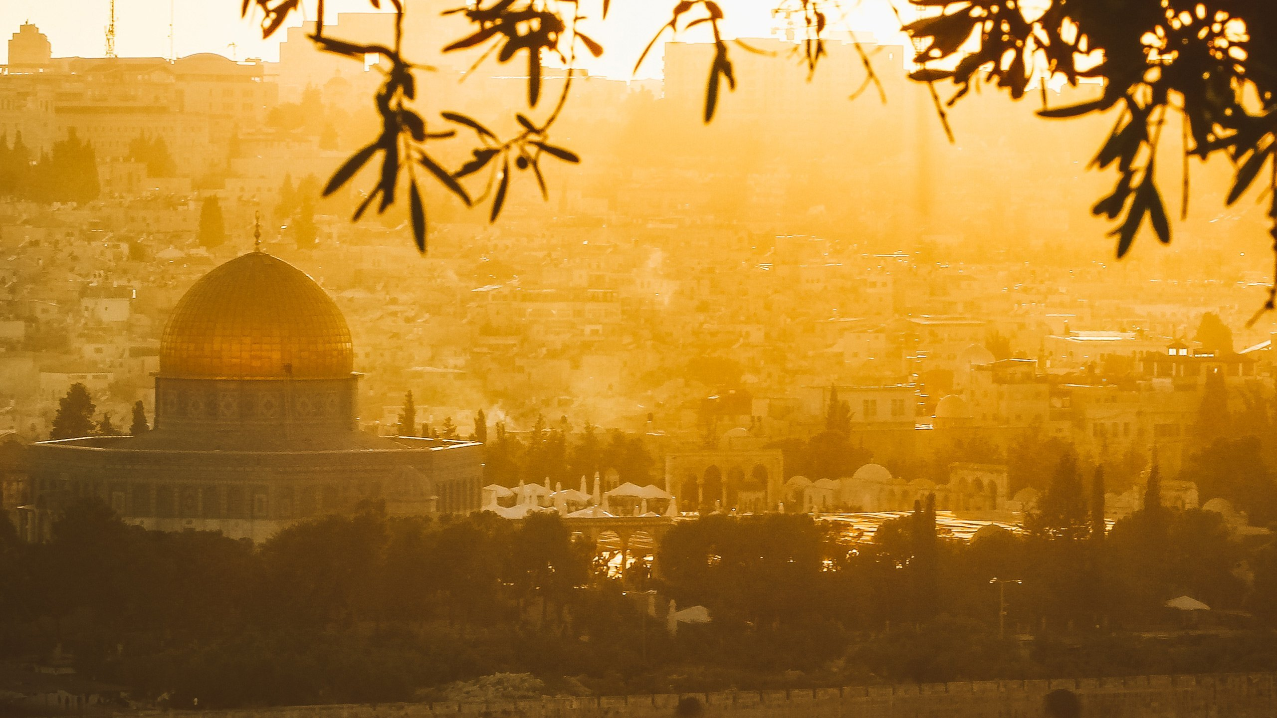 The Palestinian Struggle Through the Prophetic Lens