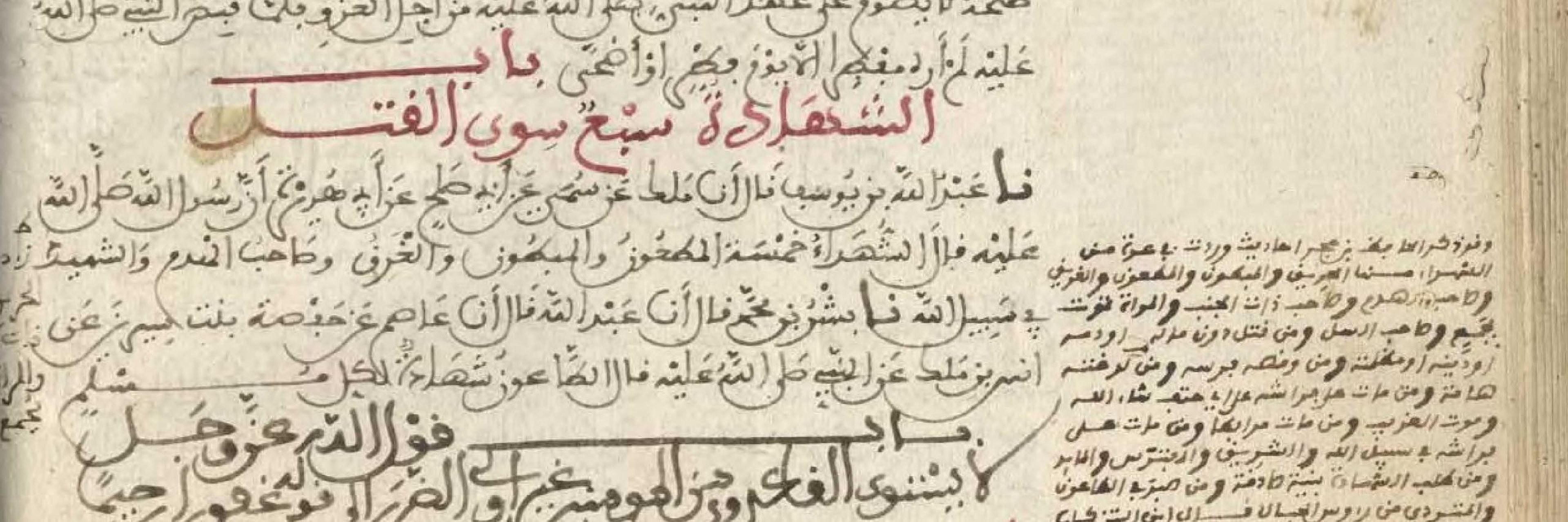 The Prophetic Promises for Martyrs and Medina: Is COVID-19 a Plague?